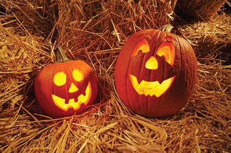 Fun Fall Festivities to do in Ohio