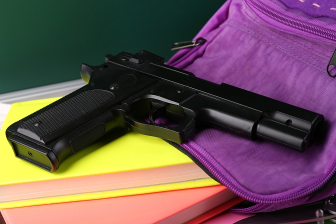 Should Trained Teachers Carry Firearms?