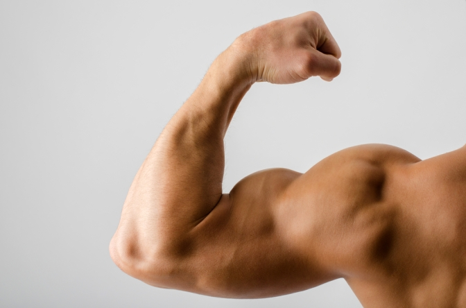 The Best Workout Plan for Bigger Arms!