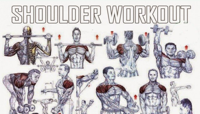 Best Shoulder Workout