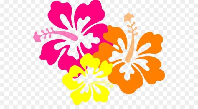 Hawaiian Spirit Day!