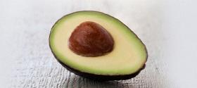 avocado-landscape