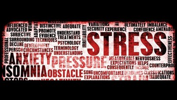 What Stresses teens out/ and How teens deal with stress